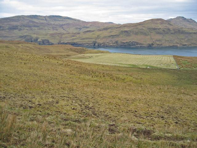Field at Kraiknish
