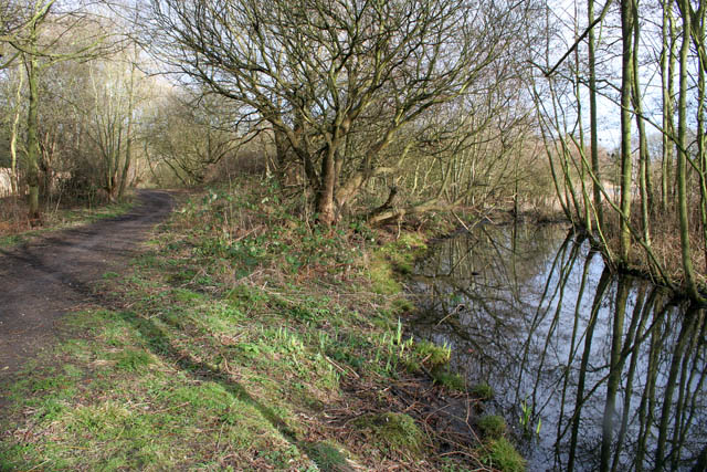 A walk round Martin's Pond (7)