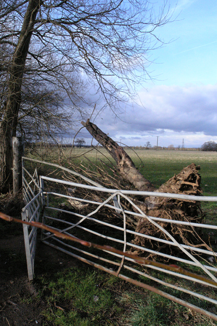 Damaged Gate, Warren Lane