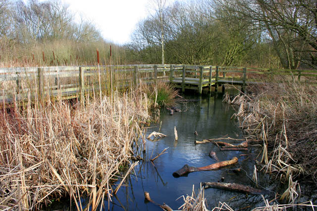 A walk round Martin's Pond (10)
