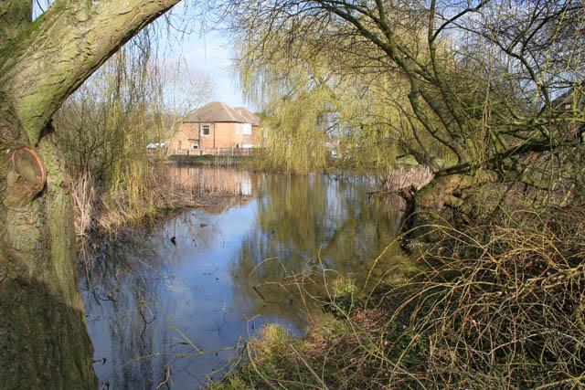 A walk round Martin's Pond (14)