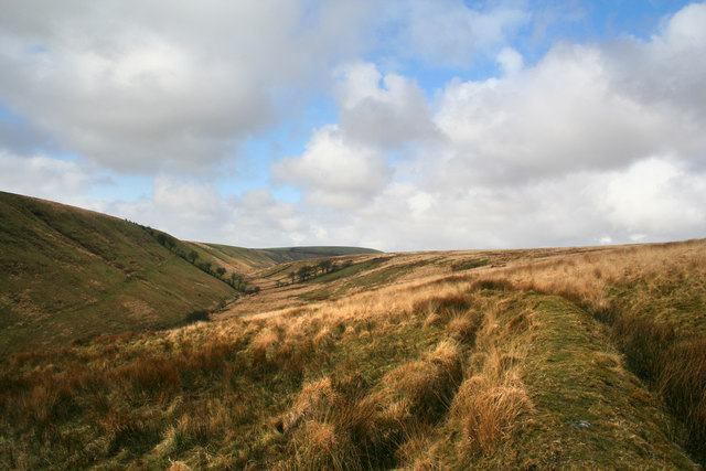 The Warren Exmoor