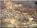 SN7278 : Cwm Rheidol Mine by John Lucas