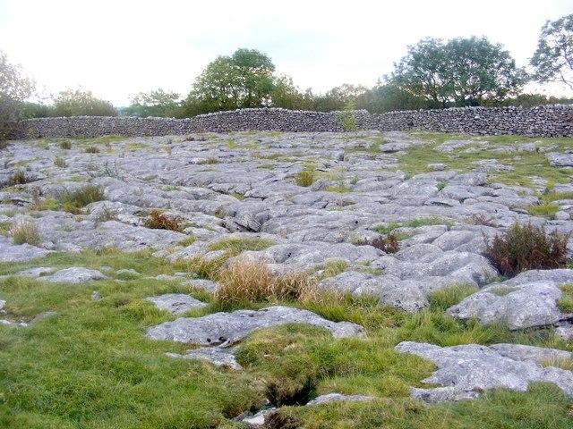 Limestone pavement by Bastow Wood