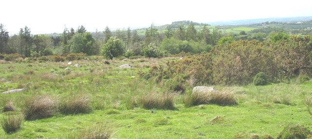 Infertile rough grazing land