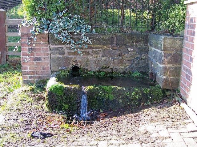 Water Trough in Cockshutts Lane, Oughtibridge