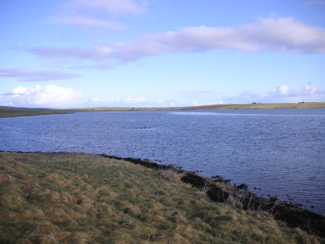 Shore of the Stenness Loch - looking to the north.