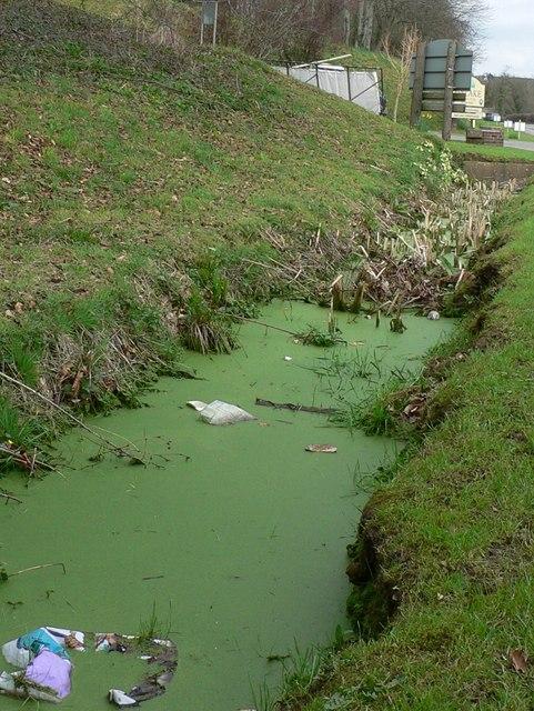 Flood ditch near Finlake
