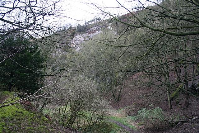 Upper Quarry, Wyche