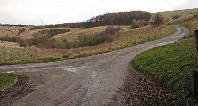 From Millington Woods to Millington Village