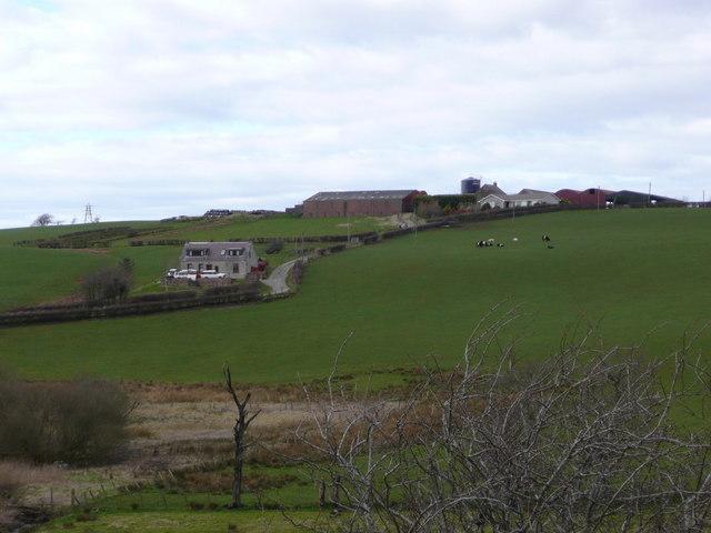 Sunnyside cottage and Drumdow farm