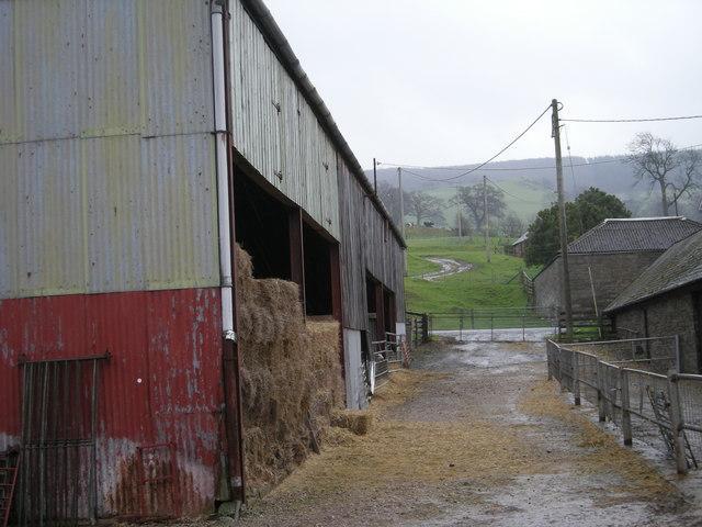 Buttington New Hall Farm