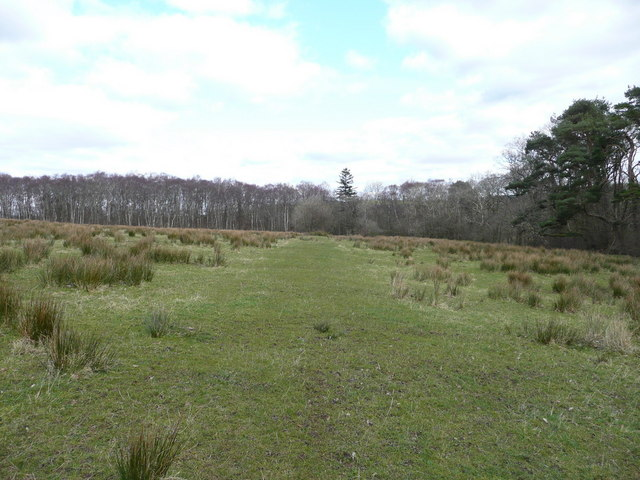 The site of old tramway