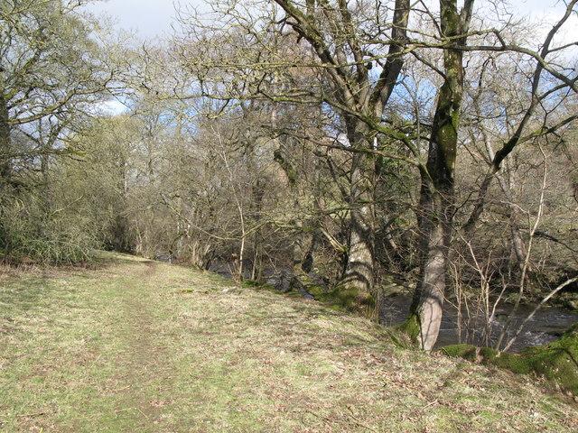 Footpath alongside Rookhope Burn