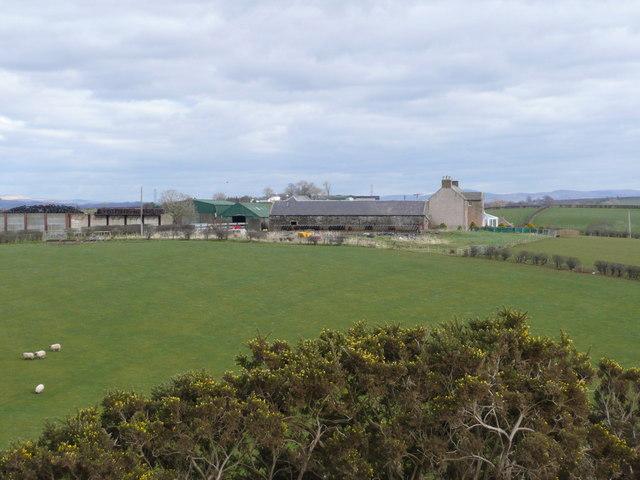 Wrighthill Farm