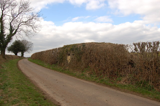 Pillbox in hedgerow at Star Lane, Avening