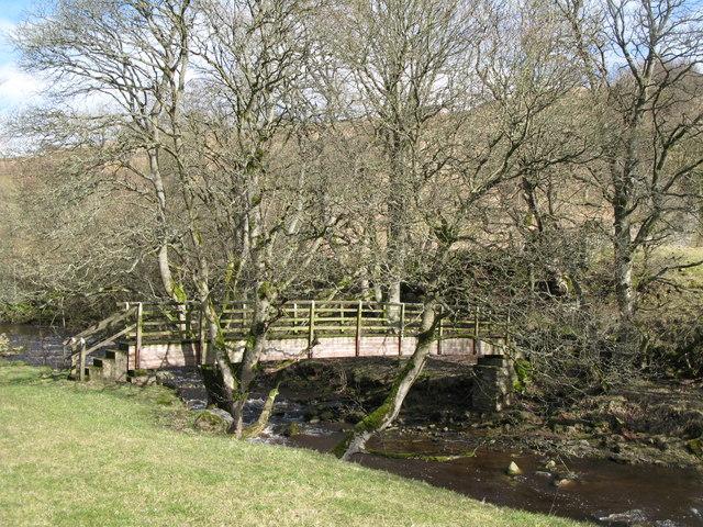 Footbridge over Rookhope Burn