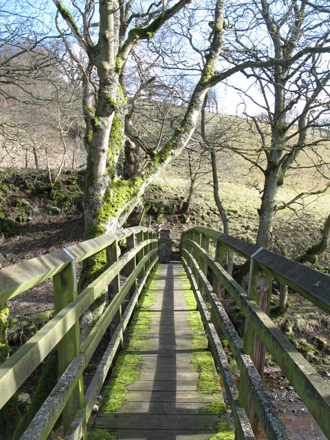 Footbridge over Rookhope Burn (2)