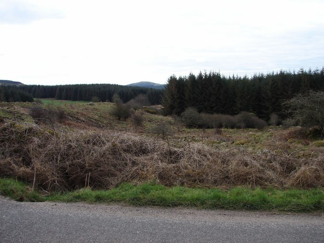 Barcafley Plantations
