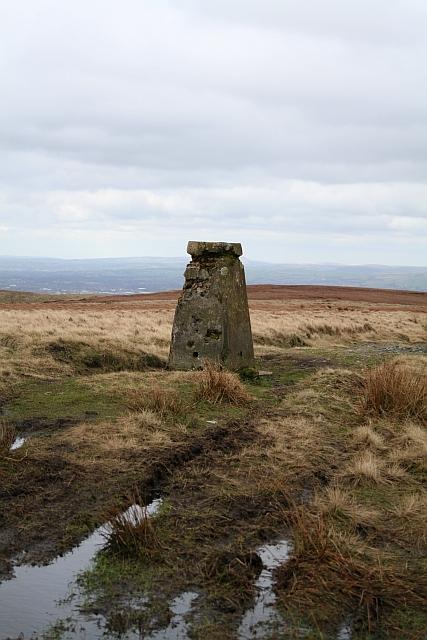 Trig Pillar, White Hill, Moss Moor (3)