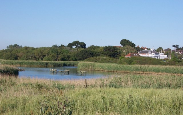 Reed Beds at Titchfield Haven