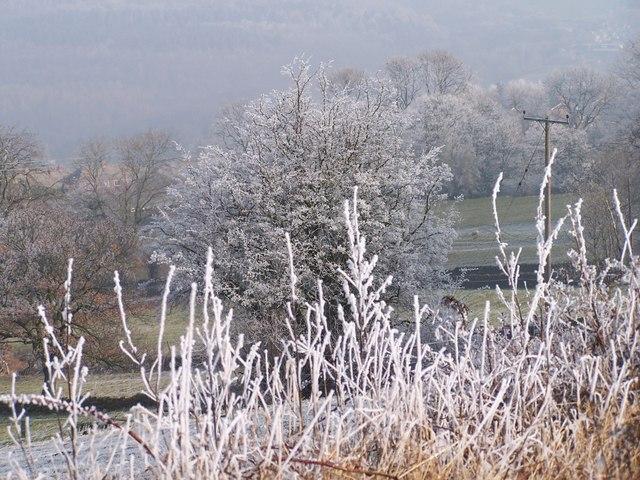Hoar Frost above Oughtibridge