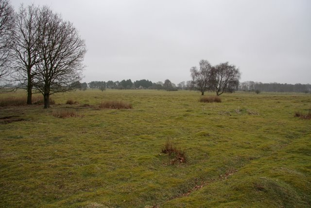 East Wretham Heath