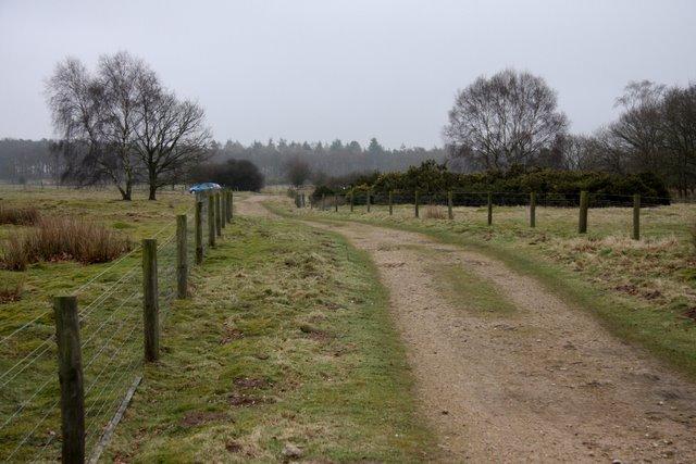 Hereward Way