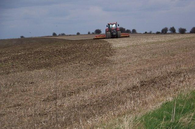 Preparing the soil, Swallowcliffe Down