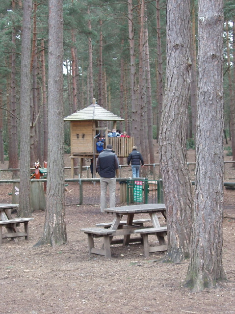 Picnic and play area, Swinley Forest, Bracknell