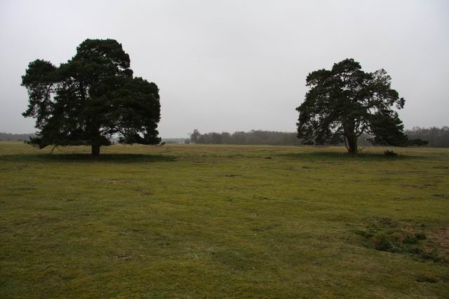 East Wretham Heath