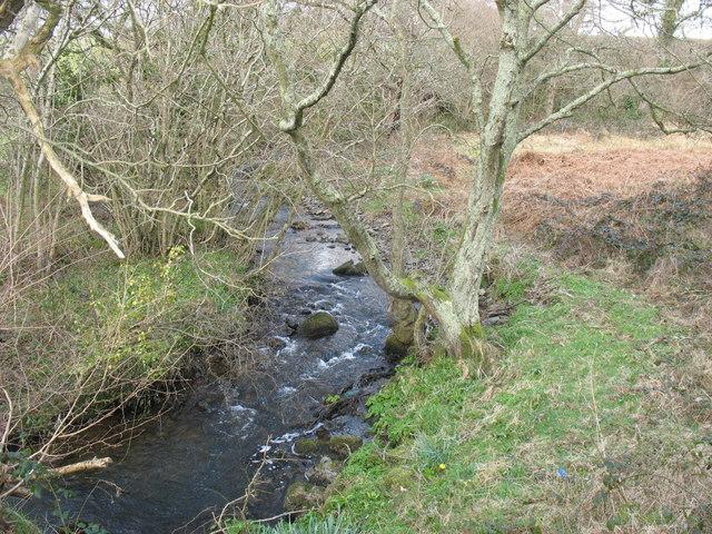Afon Carrog upstream of the footpath bridge