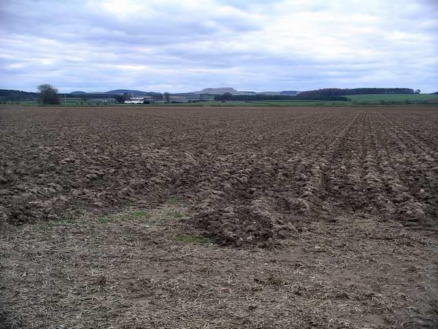 Ploughed field near Greenhill