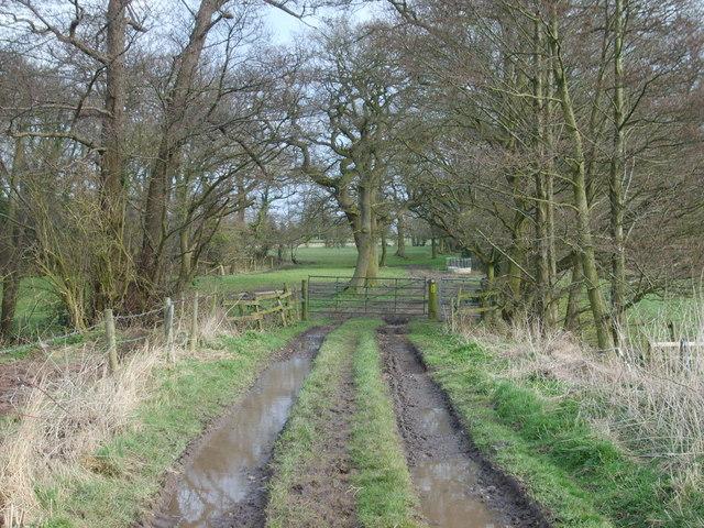Wrottesley Footpath