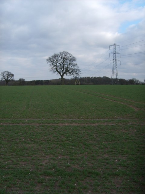 Wrottesley Lodge Field