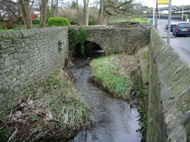 Shaw Brook