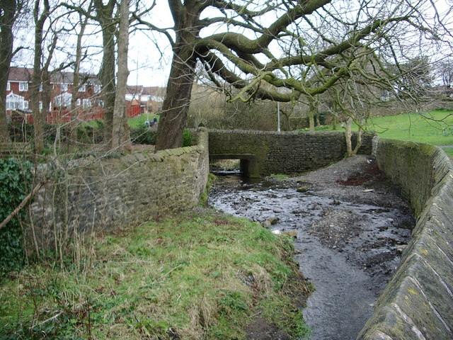 Shaw Brook