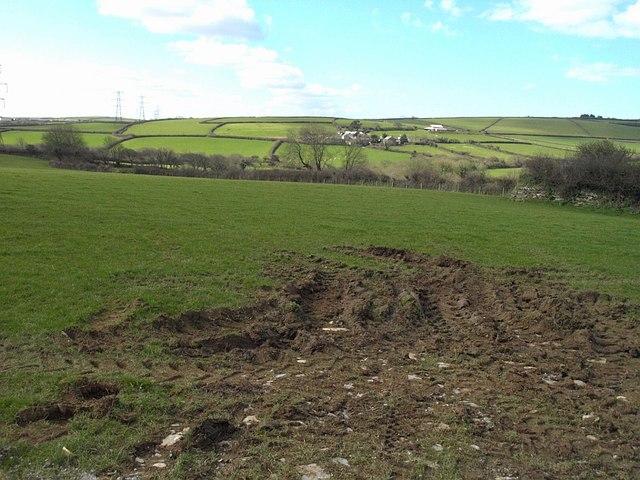 Field near Trewalder