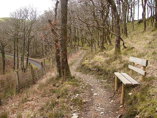 Footpath in Cwm Rheidol