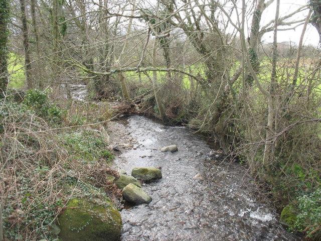 Afon Rhyd below Felinwnda Bridge