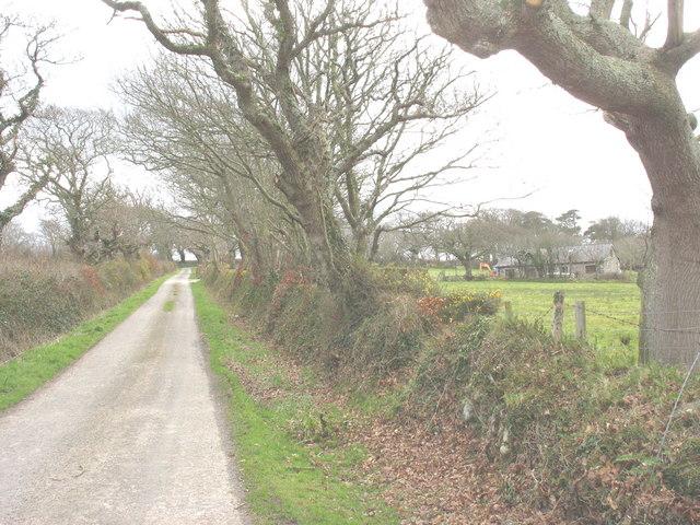 Felinwnda to Dinas-y-prif road