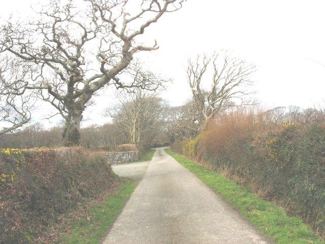 View north along the Dinas-y-prif to Felinwnda road