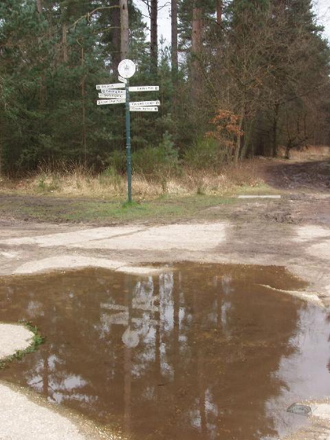 Signpost, Upper Star Post, Swinley Forest