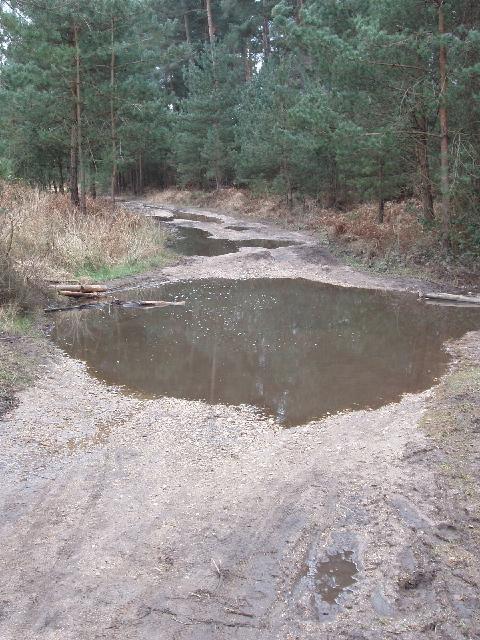 Wet gravel track by Upper Star Post, Swinley Forest