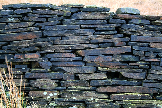 Drystone Wall on Rape Hill (2)