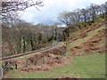 SN7377 : Vale of Rheidol Railway at Derwen (2) by John Lucas