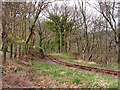 SN7377 : Vale of Rheidol Railway at Derwen (3) by John Lucas
