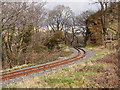 SN7377 : Vale of Rheidol Railway at Derwen (4) by John Lucas