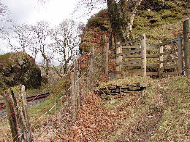 Vale of Rheidol Railway at Derwen (5)