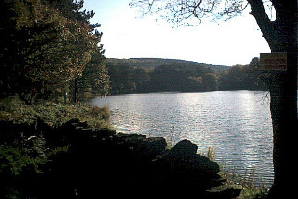 View across Roddlesworth Reservoir